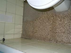 Schimmel Im Badezimmer : schimmel auf dem boden im badezimmer blue sea arenal tower el arenal s 39 arenal ~ Markanthonyermac.com Haus und Dekorationen