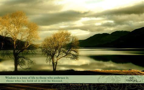 Wallpaper Bible Verses Animated - proverbs 3 18 wallpaper free nature desktop backgrounds