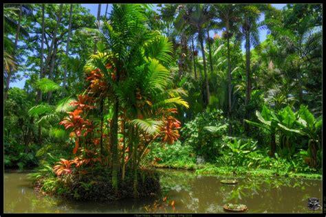 hawaii tropical botanical garden hawaii big island album 105 page 4 english