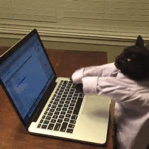 typing cat nb to in far east movement s don t speak