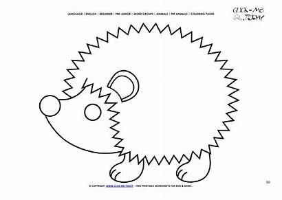 Hedgehog Coloring Pages Animals Printable English Word