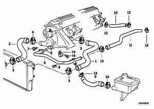 Original Parts For E36 325td M51 Sedan    Engine   Cooling