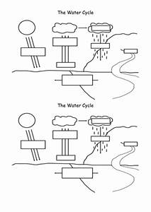 Water Cycle By Nadiaparchizadeh - Teaching Resources