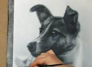 43 best Drawing images on Pinterest | How to draw, To draw ...