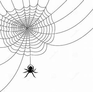 Spider web clipart etc - Clipartix