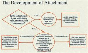 Attachment Theory Child Development