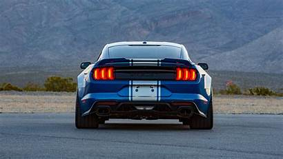Snake Super Wide Shelby 4k Wallpapers Ford