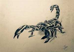 Scorpion Tattoo design for a friend by naughtyowlking on ...