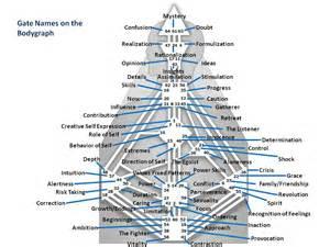 human design system lightworkersxm - Human Design System