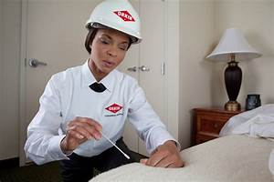 commercial bed bug services for businesses hotels With bed bug training