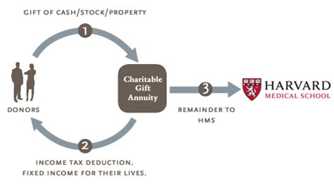 Charitable Gift Annuity Rates  How To Retire Strong. How Do You I Love You In Spanish. What Is A Flight Surgeon Yahoo Domains Coupon. Top Pr Firms In New York Web Reputation Check. Polysomnographic Technologist Job Description. Progesterone And Anxiety Liberty Surety First. Sell Gold Massachusetts Italian Cooking Class. Cosmetic Surgery Oklahoma Host Wordpress Blog. San Francisco Dui Attorneys Toner Hp Cp2025