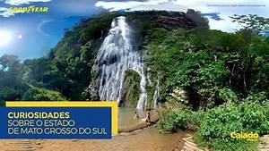 Curiosidades - Estado de Mato Grosso do Sul (MS) - Blog ...