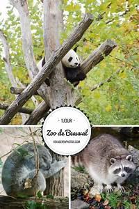 hotel autour du zoo de beauval best zoo 2017 With maison d hote proche zoo de beauval