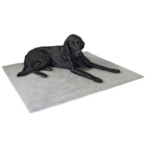 tapis electrique pour chien tapis antid 233 rapant tapis pour chien kerbl wanimo