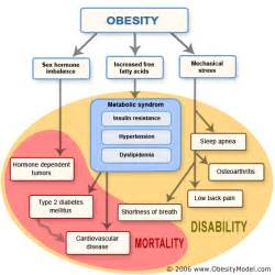 OBESITY RESOURCES ON THE INTERNET - Compiled by Betty C Jung