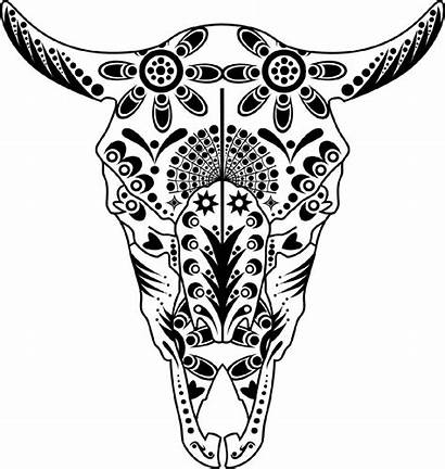 Skull Cow Coloring Pages Animal Sugar Longhorn