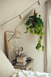 Zimmerpflanzen Für Schlafzimmer : h ngende zimmerpflanzen k nnen die beste h nge ~ A.2002-acura-tl-radio.info Haus und Dekorationen