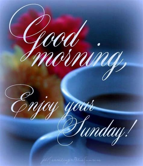 Sunday Morning Images Morning Enjoy Your Sunday Pictures Photos And