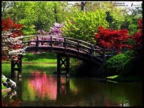 Beautiful Nature Scenery Desktop