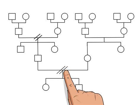 costruire  genogramma  passaggi illustrato