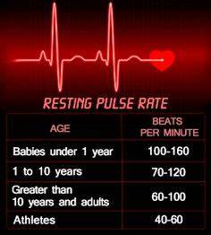 Normal Heart Rate Chart Experts Suggest A Minimum Of