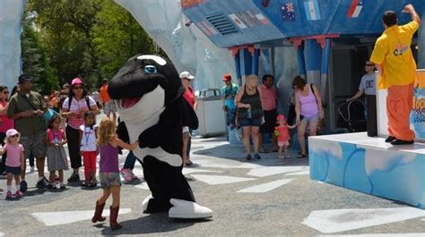 SeaWorld Wild Days 2016 | Florida Review and Travel Guide