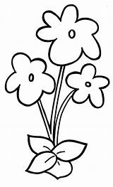 Flowers Coloring sketch template