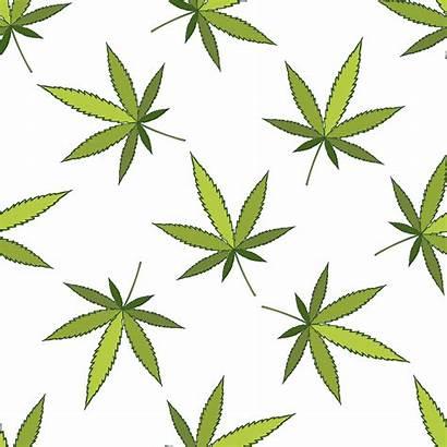 Pattern Cannabis Vector Vecteezy Clipart Graphics Vectors