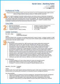 Sle Of Effective Curriculum Vitae by Exles Of A Cv Xpressfocus