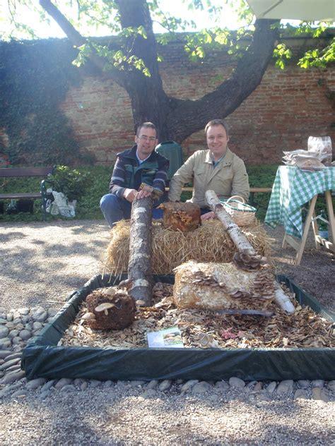 pilze zuechten raritaetenboerse botanischer garten wien