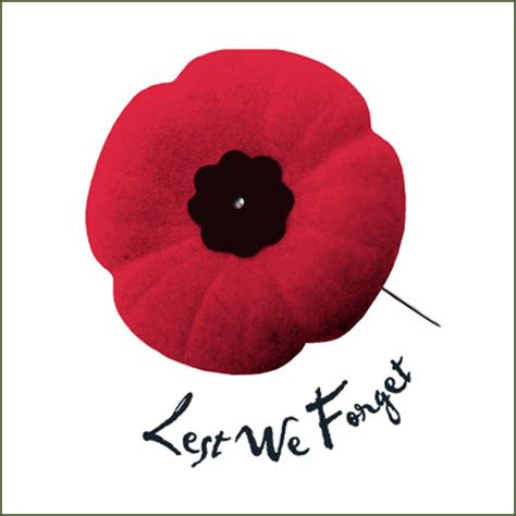 pictures of remembrance day poppies remembrance day pursuit race vrc racing