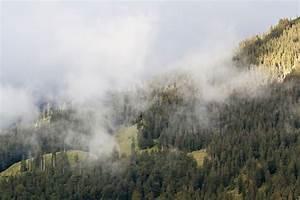 Verdunstung Wasser Berechnen Formel : berghang nach dem regen forum f r naturfotografen ~ Themetempest.com Abrechnung