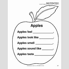 5 Senses Apple Observation  Kindergarten Apples
