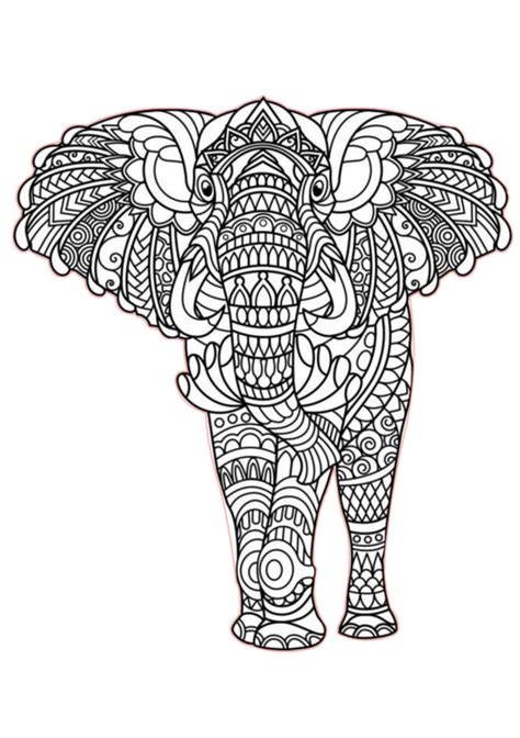 elephant coloring pages animals printable  print color craft