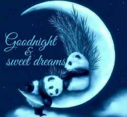 goodnight sweet dreams pictures photos and images for and