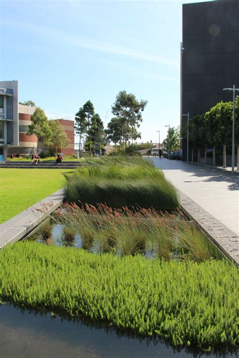 Find out more about caulfield east. Monash Caulfield Campus Green   TCL