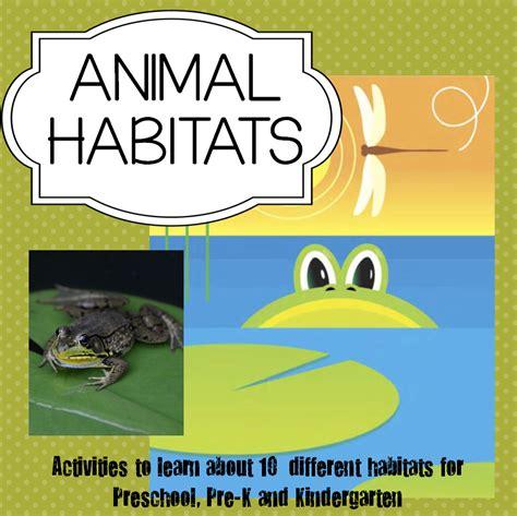preschool science  lesson plan  activities