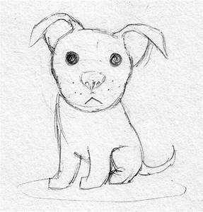 Cute pitbull sketch by Dogmaniac on DeviantArt