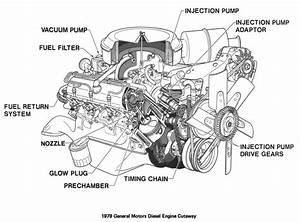 Massey Ferguson 135 Injector Pump Diagram