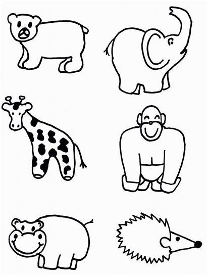 Animals Zoo Animal Draw Cut Shapes Coloring