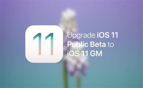 Update iOS 11 Public Beta to iOS 11 GM - Here's How
