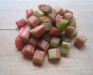 Jus Avec Extracteur : faire du jus de rhubarbe avec un extracteur de jus ~ Melissatoandfro.com Idées de Décoration