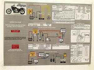 New  1987 1988 Vf700c Vf750c Honda Super Magna Laminated