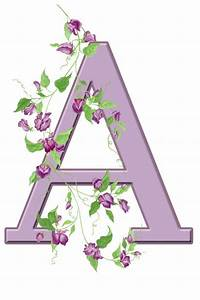 Letter A Floral Initial Free Stock Photo - Public Domain ...