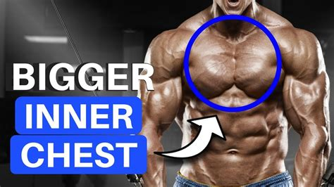 exercises  build   chest youtube