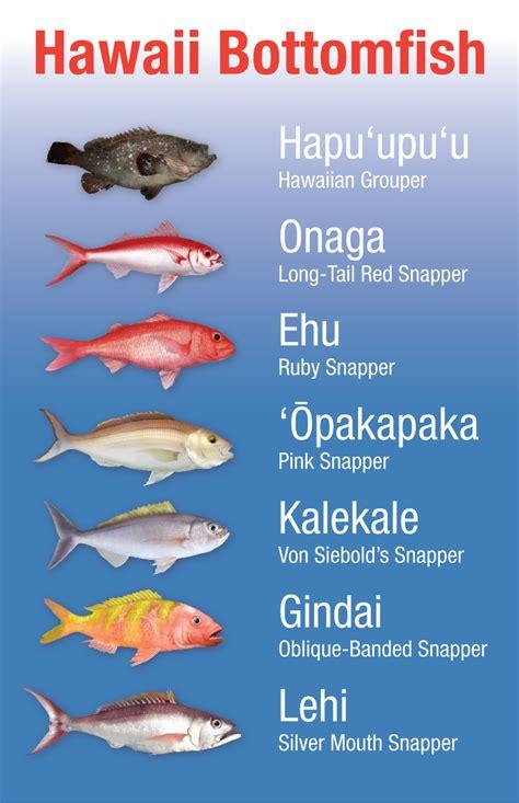 hawaii bottomfish heritage project noaa fisheries