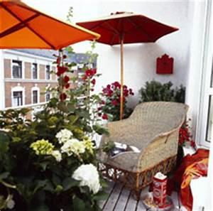 Die Schönsten Balkonpflanzen : wei e hortensien margeriten sch ne balkonpflanzen zum feierabend ~ Markanthonyermac.com Haus und Dekorationen