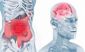 Crises d' angoisse : symptmes et traitement - Mes 15 Minutes
