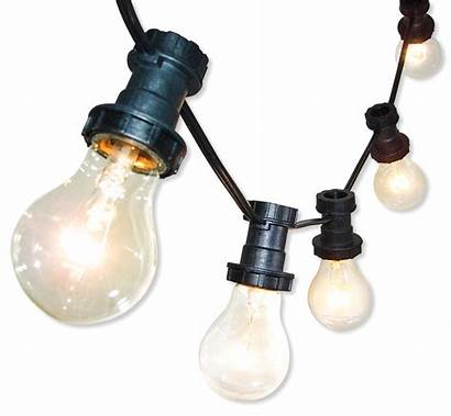 String Lighting System Lights Outdoor Indoor Luces