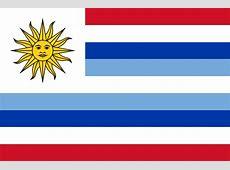 Bandera de la Unión Americana Unión Americana Historia
